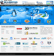 Unlimited web hosting provider